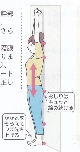 5秒伸ばすだけ!!スッキリ美姿勢で健康に